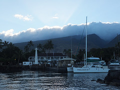 Lahaina oceanfront homes