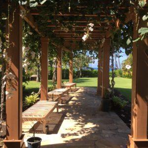 Wailea Homes For Sale