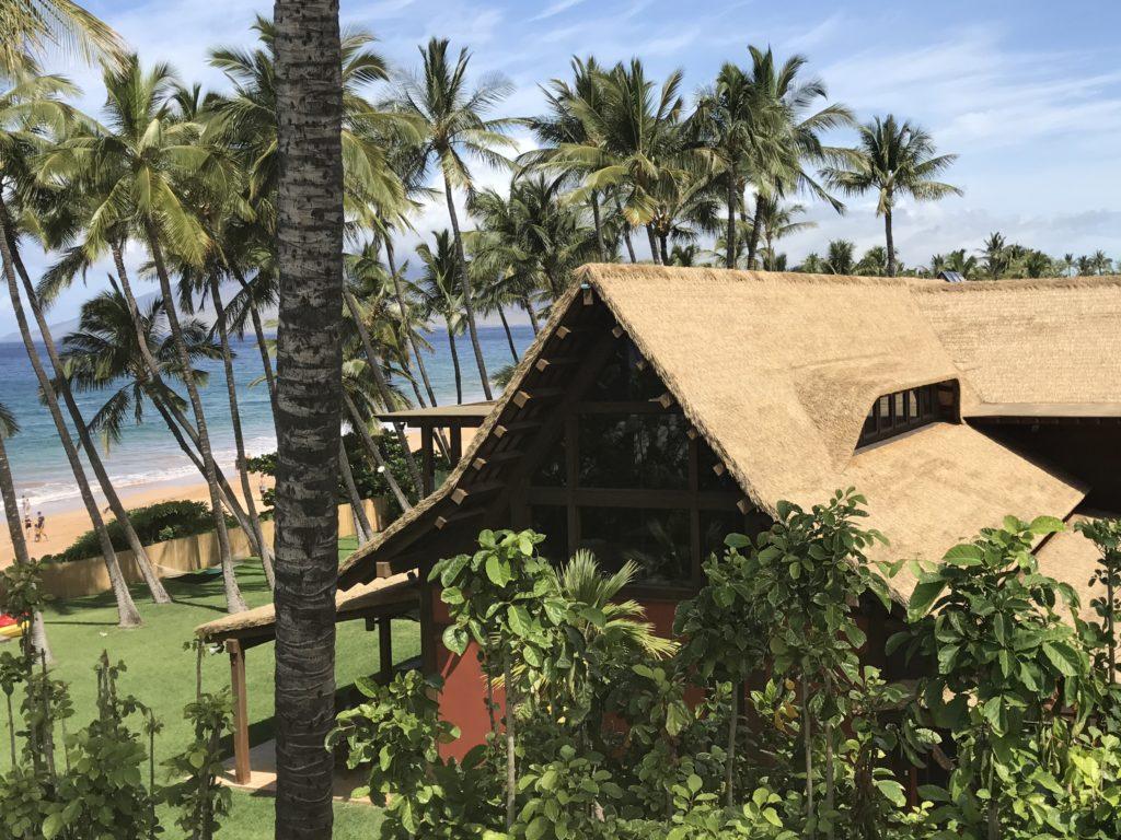 Makena luxury Homes