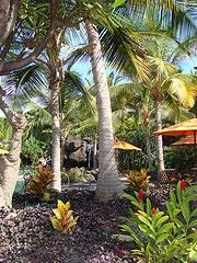 Hoolei Wailea Maui Villas