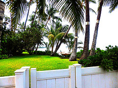 Lahaina Maui Ocean Front Homes