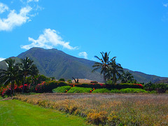 Launiapoko Maui Homes For Sale