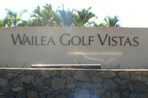 Homes in Wailea Golf Vistas