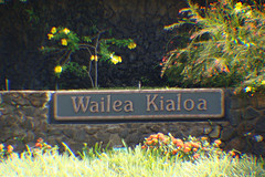 Wailea Kialoa Homes