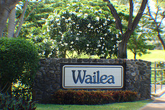 Wailea Luxury Homes