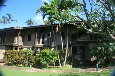 Sugar Cove Maui