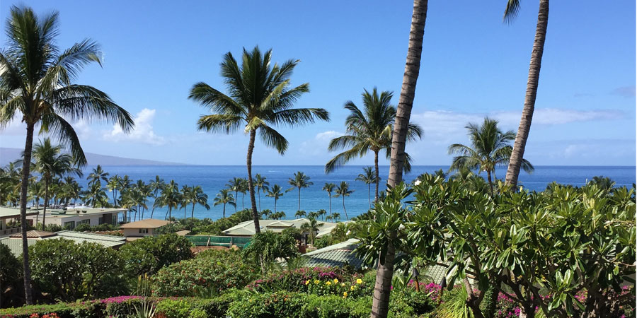 Hones in Wailea Maui