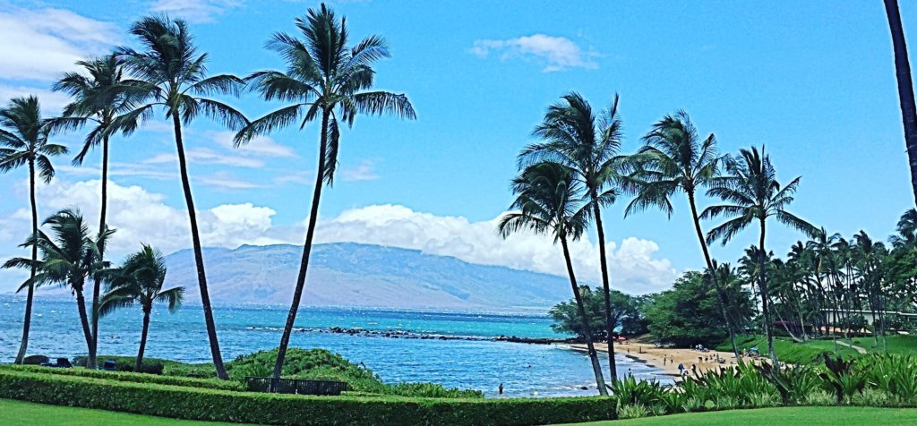 Wailea Luxury Properties