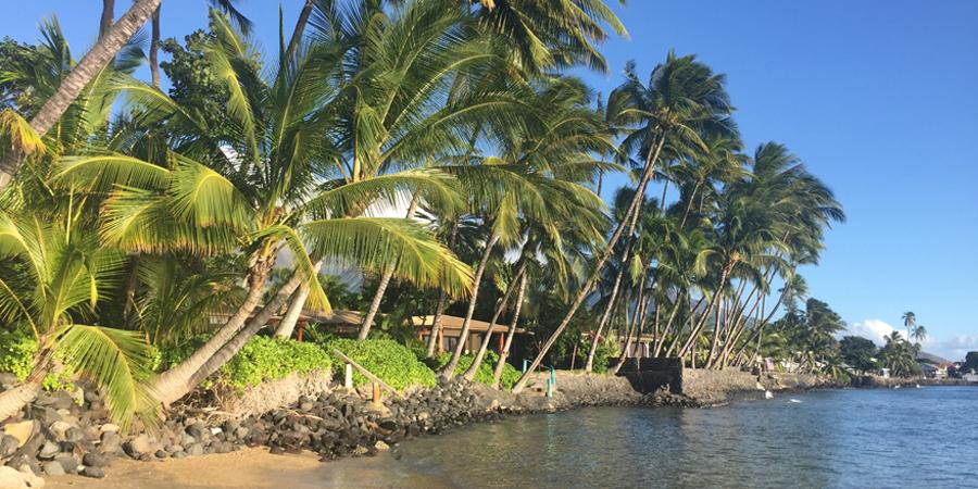 Homes in Kihei Maui