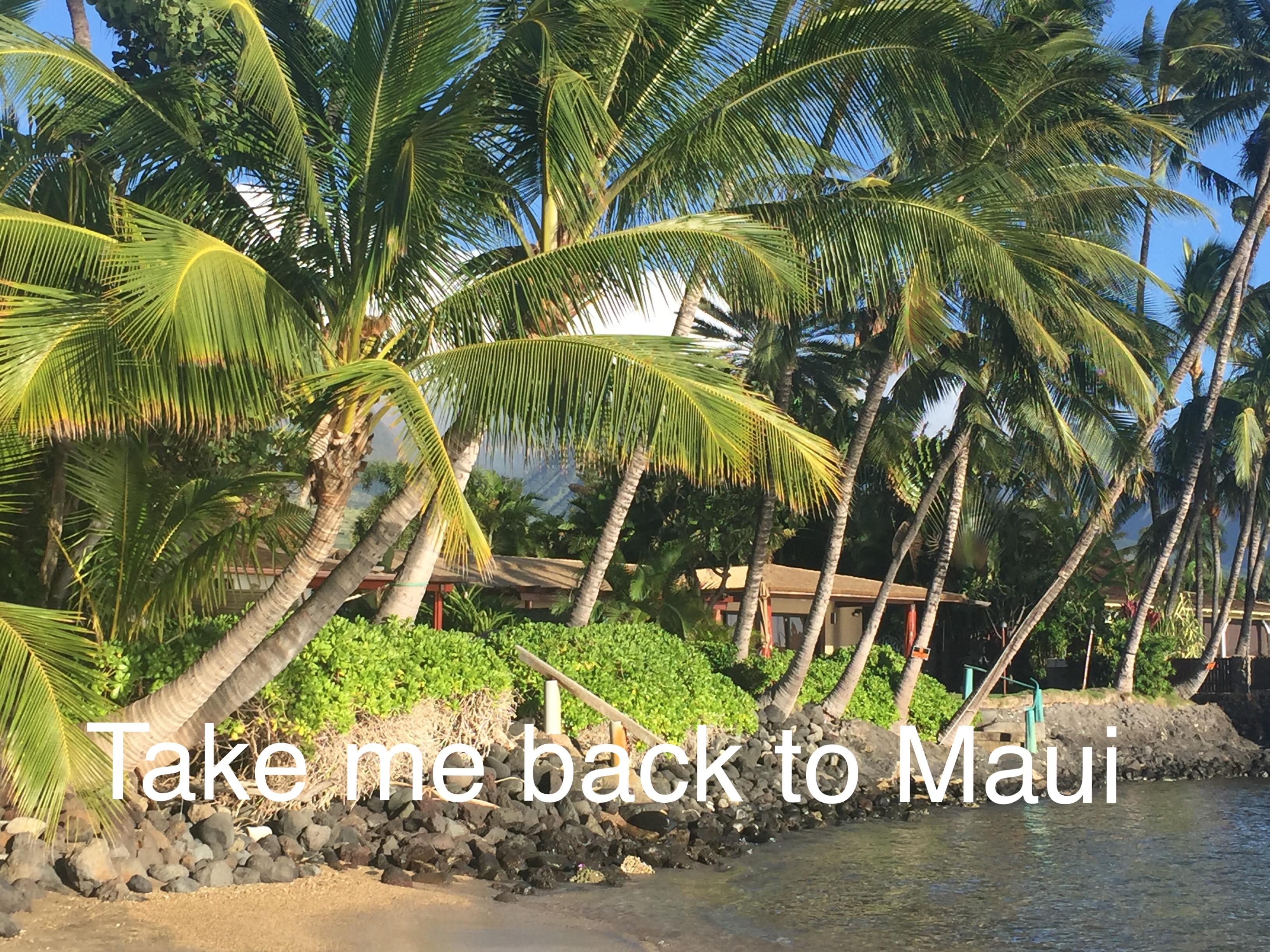 Back to Maui