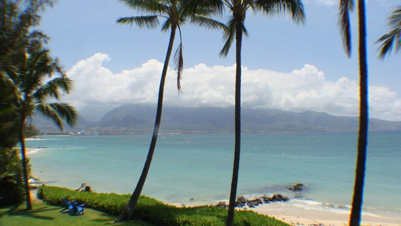 Maui's Northshore Homes